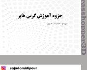 جزوه فارسی گرس هاپر